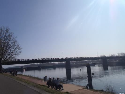 Menschenkette auf der Brücke bei Breisach vergangenen Sonntag