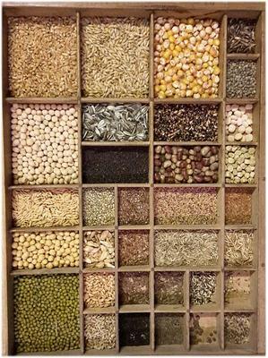 Vielfalt im Saatgut soll durch die Open Source Lizenz geschützt werden.