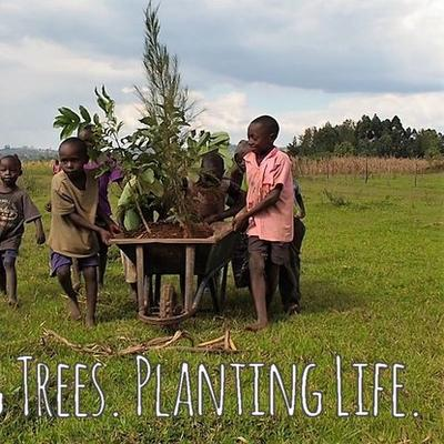Bäume.Leben pflanzen. das OTEPIC Kenia Project