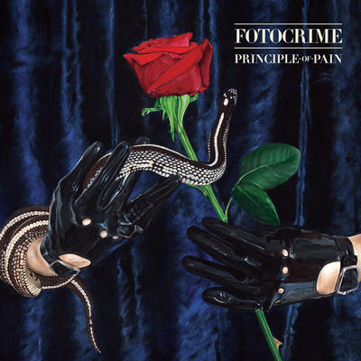 fotocrime - principle of pain