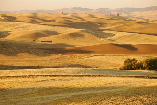 Landwirtschaftliche Fläche in Kansas, USA
