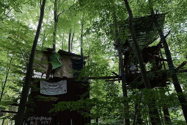 Besetzung im Dannenröder Forst am 4. Oktober 2020
