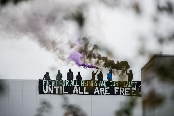 Aktivist*innen der Gruppe Tear Down Tönnies blockierten im Oktober 2019 den Schlachthof des Skandalunternehmens in Kellinghusen
