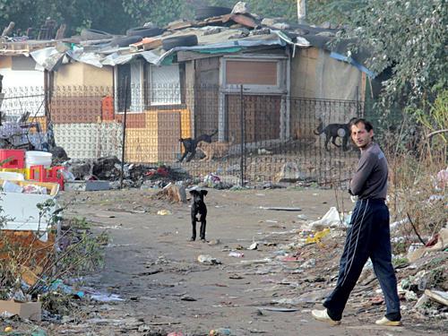 Ausweglose Armut: Lebensverhältnisse von Angehörigen der Minderheit der Roma in Serbien