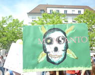 march against monsanto & syngenta