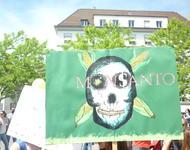 march against monsanto & syngenta