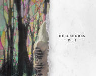 niights - hellebores Pt. I