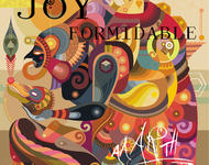 the joy formidable - aarth