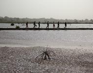 Fischer in inspizieren die Dämme in einer Lagune in der Casamance