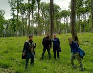 Personen und Reporter im Wald