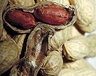 220px-Peanuts