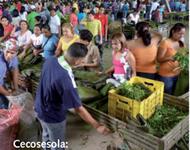 Cecosesola Lesereise 2013